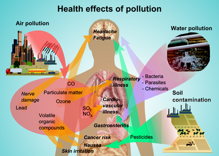 The effect of indoor air pollution on human health