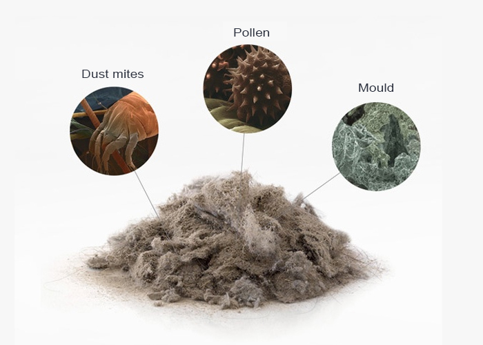 Common contaminantsin Indoor Air